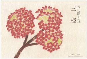 「花に聞くvol.13三椏」